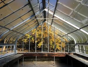 A Glass greenhouse in Louisville Kentucky